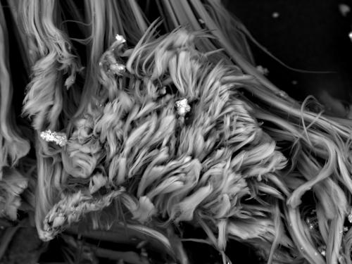 Asbest (Chrysotil)